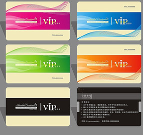 时尚精美简洁大气VIP会员卡