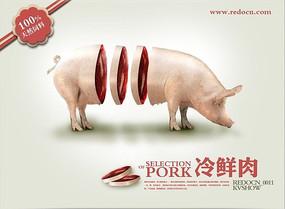 鲜猪肉海报