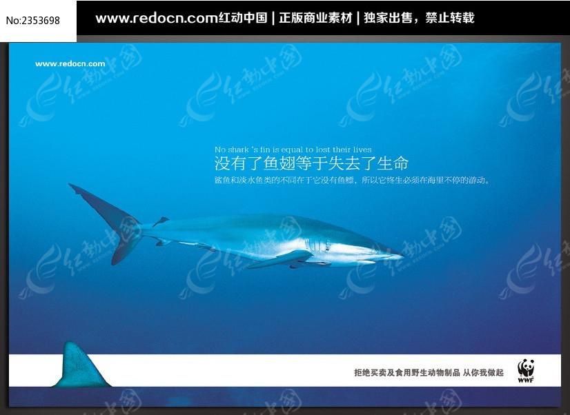 公益海报设计 创意保护野生动物海报图片