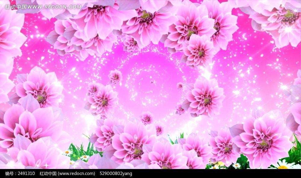 粉色花钢琴曲视频背景图片