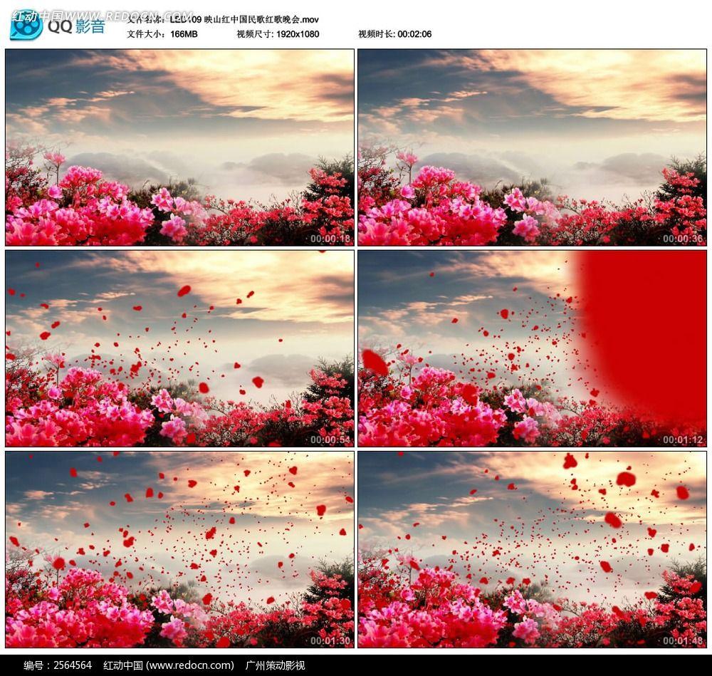led映山红视频视频歌曲学洗车背景图片