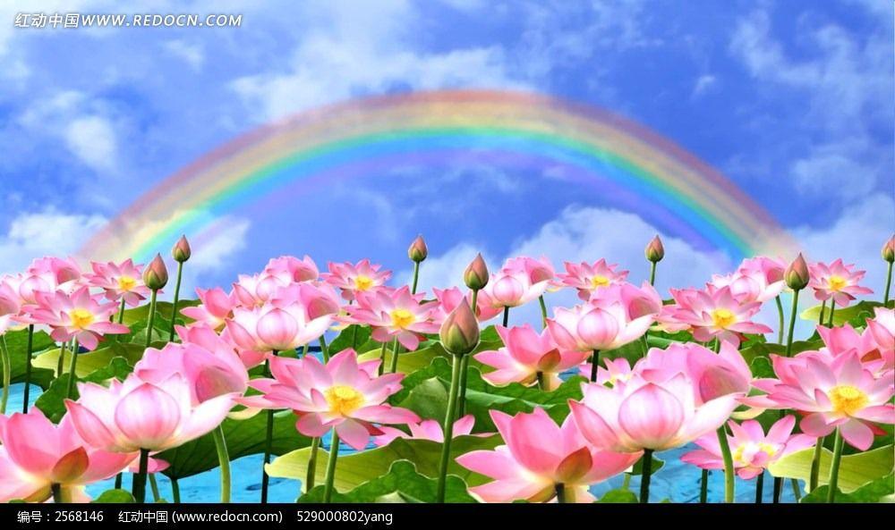 5376,芙蓉深处小船通(原创) - 春风化雨 - 诗人-春风化雨的博客