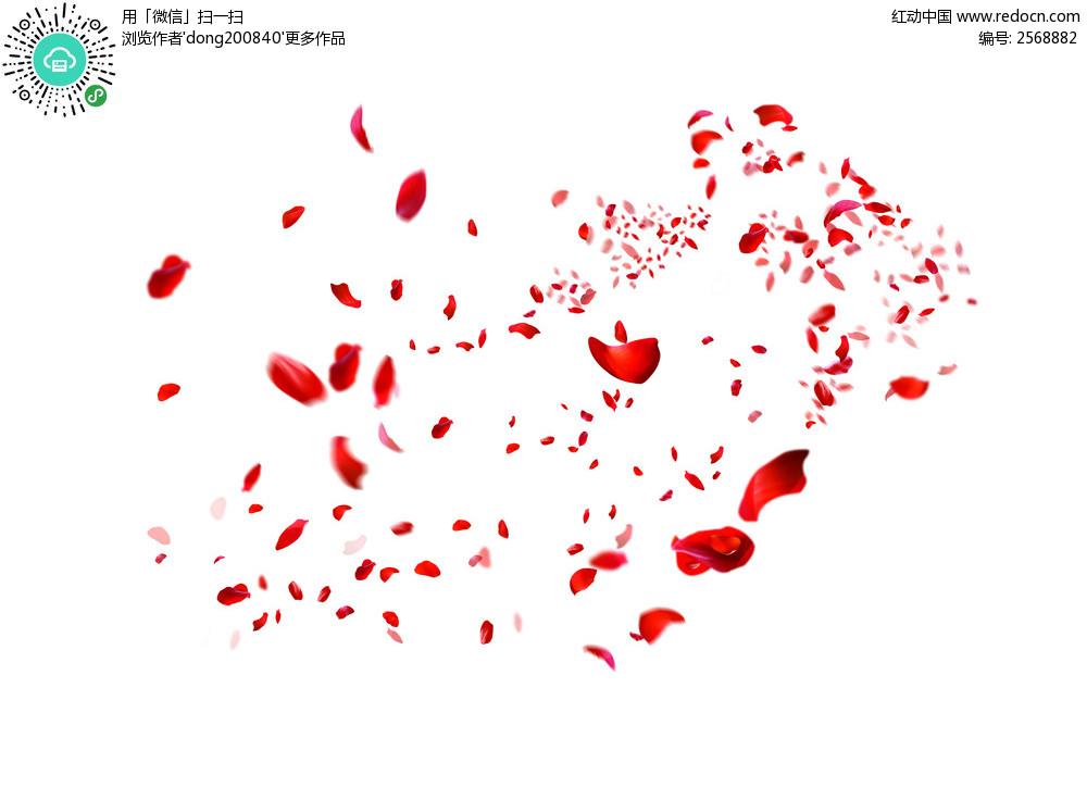 散落的玫瑰花瓣