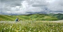 高原草原风景
