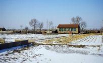 冬季农家院外的田地