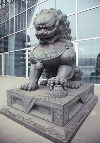 玻璃幕墙前的石狮子雕像