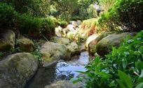 越秀山庭院溪流