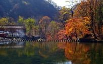 丹东蒲石河秋天风景