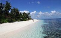 海滩边的珊瑚礁