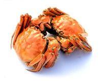 两只蒸熟的毛蟹