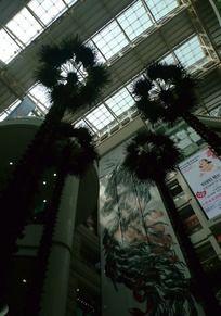 正佳广场室内植物景观