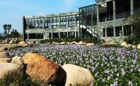 三生融合的温州公园
