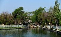 公园湖畔风景