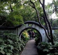 植物园中散步的老夫妻