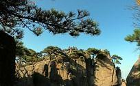 松枝下的黄山奇石
