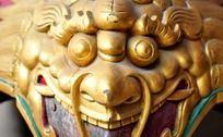 金色的狮子装饰图形
