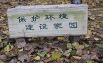 爱护环境建设家园木板提示语