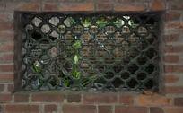 中山大学琉璃窗口 古窗口 老窗口