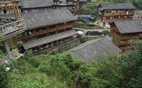 绿荫环绕的特色民居