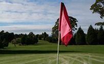 高尔夫运动场