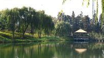 河面上的美丽茅草亭