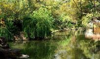 红梅公园的美丽河面
