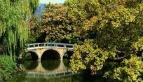 红梅公园的小桥河面绿树