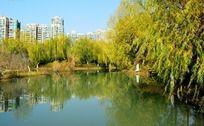 蓝天下的高楼河面