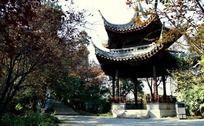东坡公园的问月亭