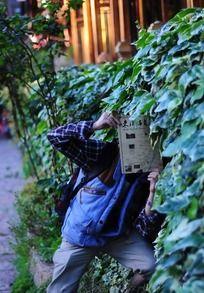 长满植物的围墙