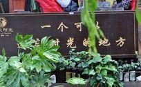 丽江古城温馨的句子