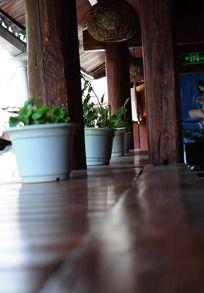 客栈阳台的盆栽植物