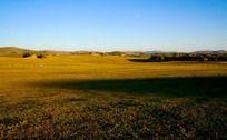 广阔的坝上草原