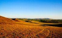塞罕坝大草原