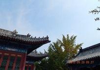 蓝天下的古建筑