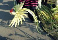 民间手工棕榈叶编织的凤凰图片