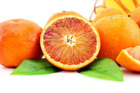 血橙横切面