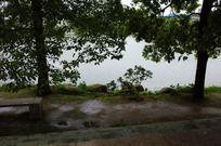 雨中湖边小景