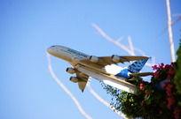 蓝天下花丛上的飞机模型