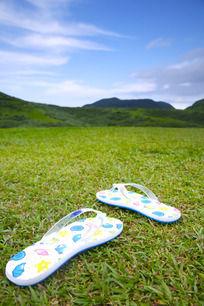 绿茵草地上漂亮的女式拖鞋
