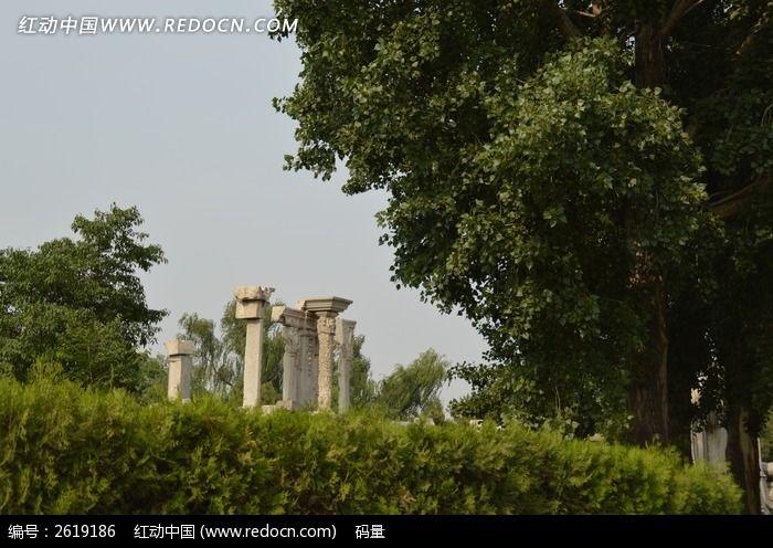 颐和园树丛中的残石墩图片