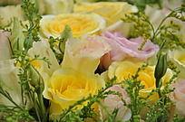 黄玫瑰和桔梗