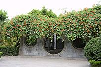 河南大学绿色小亭侧拍