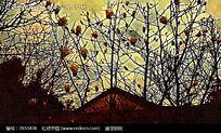 屋檐花卉油画