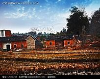 乡村红砖房子