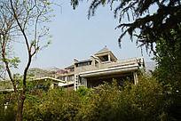 绿树环绕的别墅