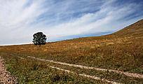 蓝天白云下的草原风光