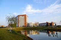 蓝天下的佛职院校园景观