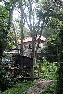 庐山树林里的房子