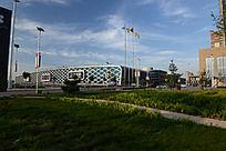 辛集皮革城前的草地
